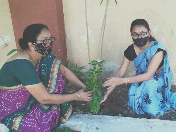 મહેસાણામાં એસ.જી. શુકલ કન્યા વિદ્યાલયમાં શિક્ષિકાએ પ્રથમ દિને શાળામાં વૃક્ષારોપણ કર્યુ. - Divya Bhaskar