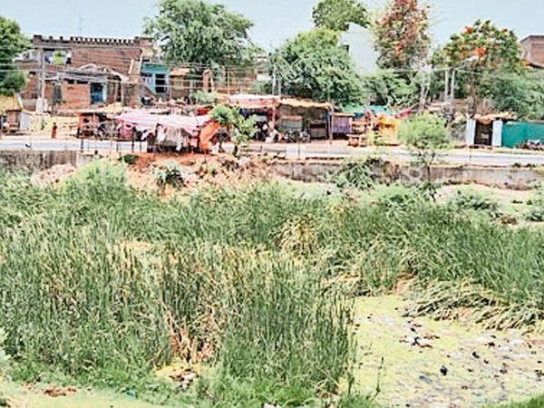 વિરપુર તાલુકાના લાવેરી નદીના બંને પુલ નિચે 2૦ ફુટ જેટલો કચરાનો ઢગલાઓ થઇ ગયા છે. - Divya Bhaskar