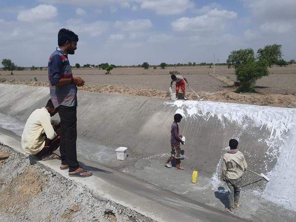 પાટડીની કેનાલમાં રીપેરીંગ કામ હાથ ધરાતા ખેડૂતોને રાહત થઇ, પંચાયતના પ્રમુખની મહેનત રંગ લાવી - Divya Bhaskar