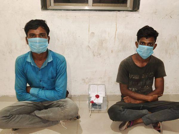 થાનગઢમાંથી એલસીબી ટીમે 2 શખસને ગેરકાયદે હથિયાર સાથે ઝબ્બે કર્યા હતા. - Divya Bhaskar