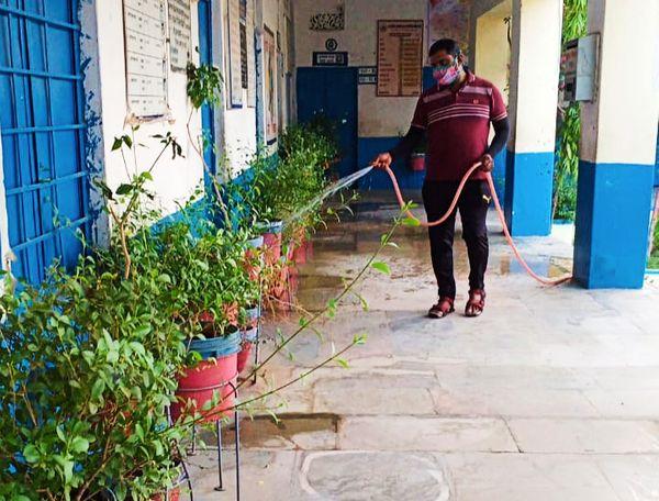 स्कूल परिसर में लगे पेड़-पौधों में पानी डालते शिक्षक घनश्याम।