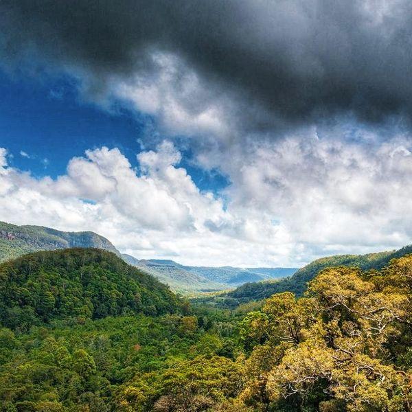माउंट आबू में बीच-बीच में धूप भी खिली। बादल और सूरज के बीच आंख मिचौली दिन भर चली।