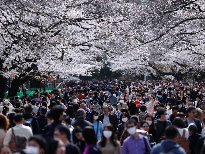 फोटो जापान के टोक्यो शहर में स्थित यूनो पार्क की है। यहां कोरोना संकट के बावजूद बड़ी संख्या में लोग पहुंच रहे हैं। जापान में अब तक 20 हजार से ज्यादा संक्रमण के मामले सामने आ चुके हैं। - Dainik Bhaskar