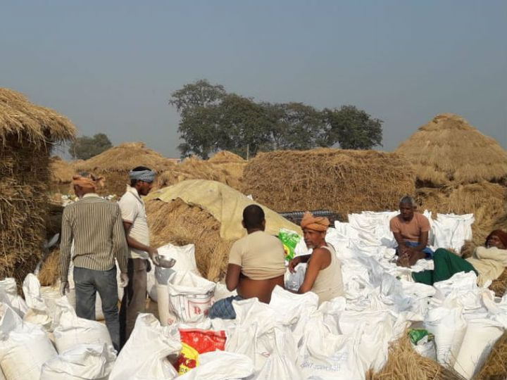 बिहार में किसानों की आय कम होने का एक बड़ा कारण ये भी है कि जब भी कोई फसल कटती है उस समय बाजार में उसका दाम कम रहता है। - Dainik Bhaskar