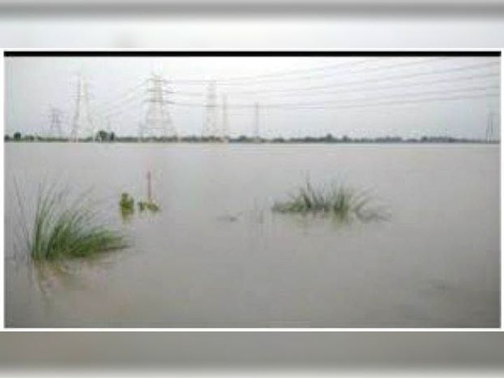 In the Yamuna submerged area, 2 m in the second year by stopping the water.  Increased groundwater level Funny Jokes