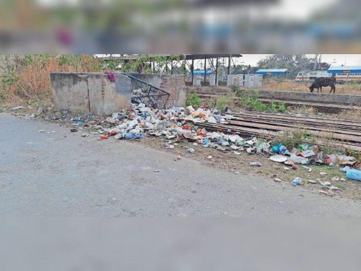कालका की रेलवे कॉलोनी में फैली गंदगी। - Dainik Bhaskar