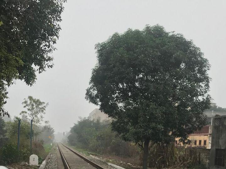 जमीन पर धुंध, आसमान में बादल .... जालंधर में आज दिन भर ऐसा ही मौसम रहने वाला है। - Dainik Bhaskar