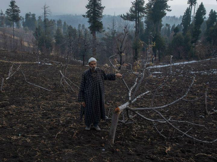 जम्मू कश्मीर में प्रशासन ने अतिक्रमण के नाम पर जंगलों और पहाड़ों पर अस्थाई शेड और मिट्टी के घरों में रहने वालों को निकालना शुरू कर दिया है। उनके बाग-बगीचे नष्ट किए जा रहे हैं। फोटो-आबिद भट्ट - Dainik Bhaskar
