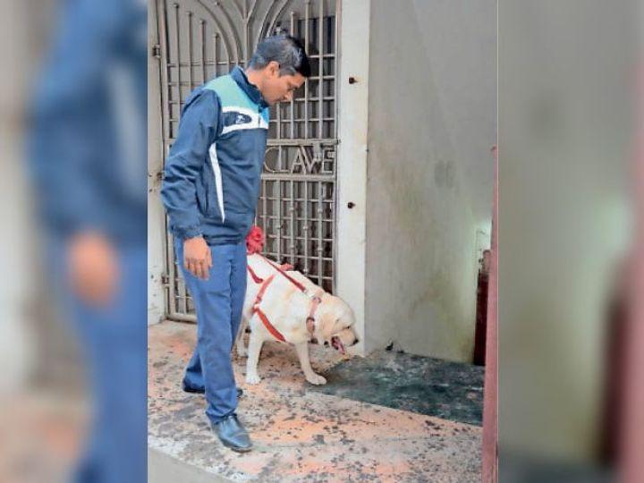 जांच के दौरान बम निरोधक दस्ते का कुत्ता। - Dainik Bhaskar