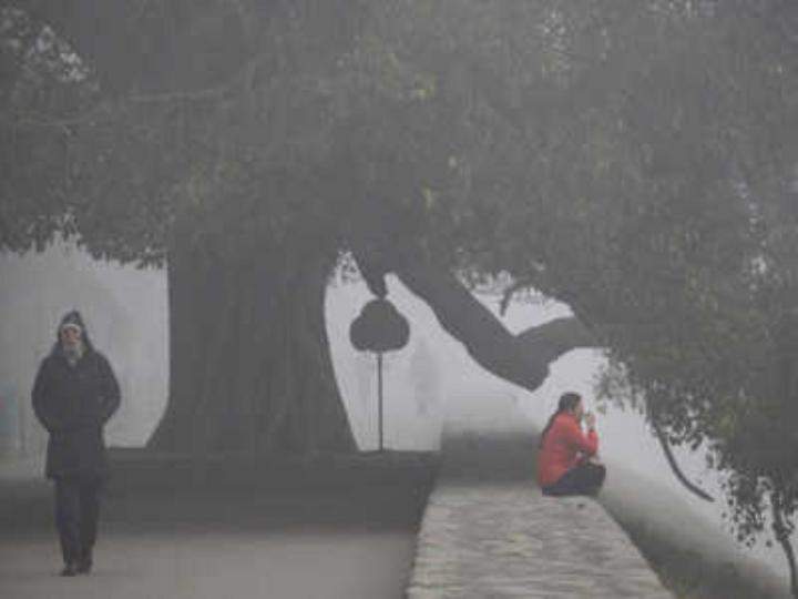गुरुवार को बादल छा सकते हैं। कोहरा छा सकता है। दिन का अधिकतम तापमान 15 और न्यूनतम तापमान 6 डिग्री रह सकता है। - Dainik Bhaskar