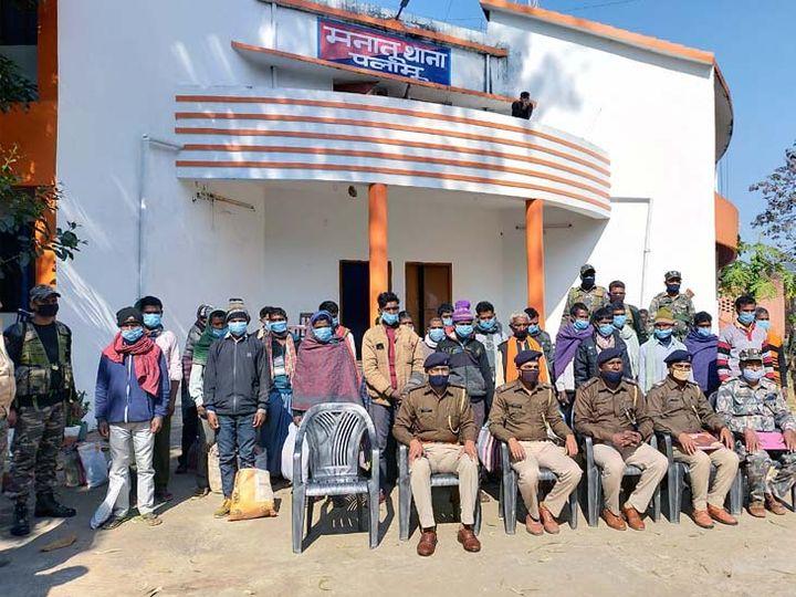 पोस्ता की खेती की जानकारी मिलने पर मनातू पुलिस एक सप्ताह से इसे नष्ट करने व इसमें संलिप्त लोगों को चिन्हित करने के अभियान में जुटी है। - Dainik Bhaskar
