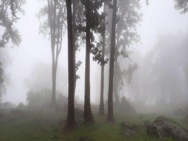 सरगुजा संभाग के अधिकतर हिस्से कोहरे की चादर से लिपटे हैं, यहां शीतलहर चल रही है। - Dainik Bhaskar