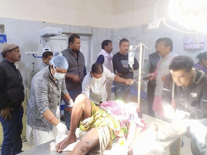 छत्तीसगढ़ के गौरेला-पेंड्रा-मरवाही जिले में भालू ने हमला कर दो महिलाओं को घायल कर दिया। - Dainik Bhaskar