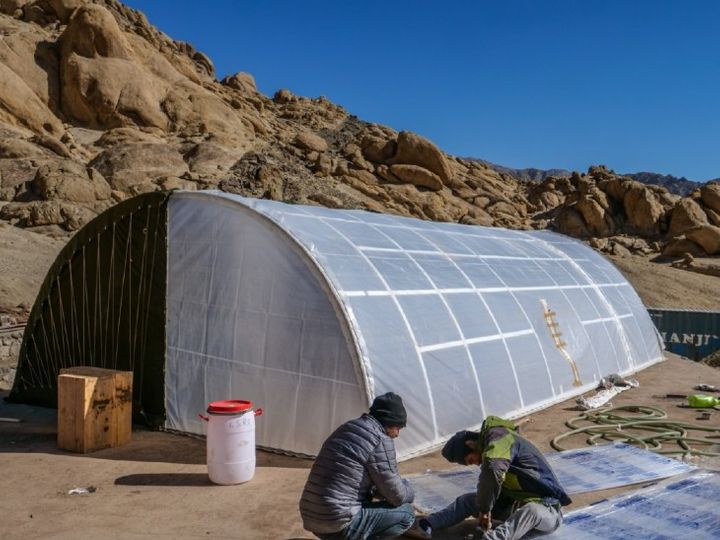 Sonam Wangchuk's partner building a tent in Galvan.  - Dainik Bhaskar