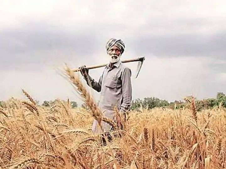 Experts say that input costs of farmers are increasing, while living is becoming expensive.  (File photo) - Dainik Bhaskar
