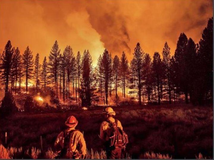 आग ने कैलिफोर्निया में 5,500 मेगावाट बिजली प्रदान करने वाली तीन ट्रांसमिशन लाइनों को जला दिया है। - Dainik Bhaskar
