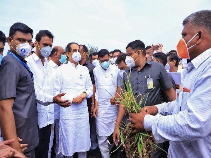 अतिवृष्टीनंतर मुख्यमंत्र्यांनी उस्मानाबादेत पाहणी केली. पण अद्याप निम्म्या शेतकऱ्यांना दिलासा मिळाला नाही. - Divya Marathi