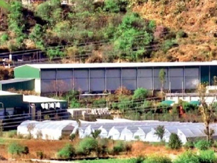 सिमला जिल्ह्यात असलेले सफरचंदाचे कोल्ड स्टोअरेज. - Divya Marathi
