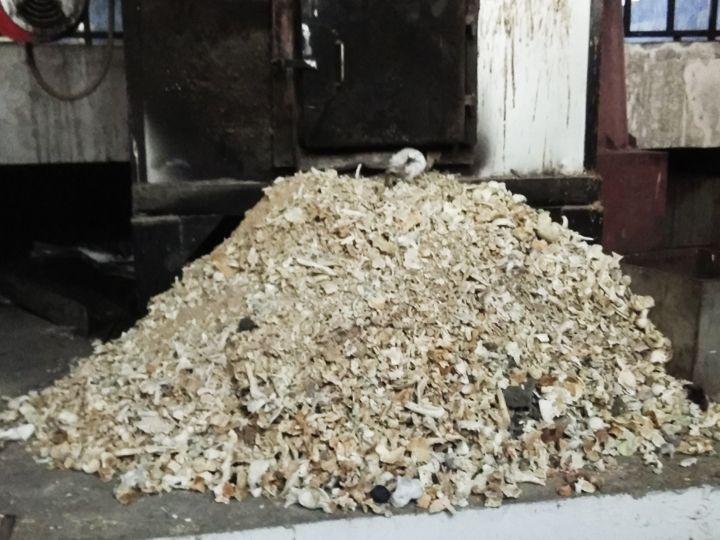 આ તસવીર સુરેન્દ્રનગરના સ્મશાનગૃહની છે, જ્યાં અસ્થિઓનો ઢગલો પડ્યો છે, પણ કોઈ સ્વજન લેવા નથી આવ્યું. - Divya Bhaskar