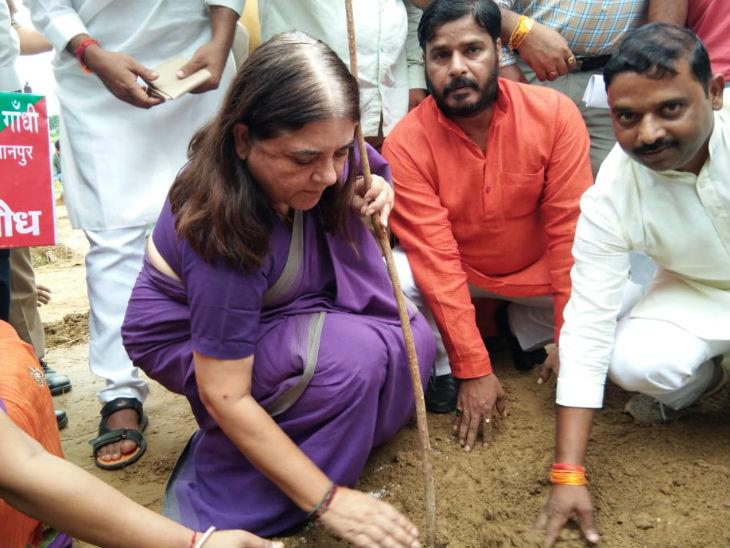 मेनका गांधी ने अपने संसदीय क्षेत्र में नमो वन का किया शुभारंभ, अनुच्छेद 370 पर पीएम की तारीफ की लखनऊ,Lucknow - Dainik Bhaskar