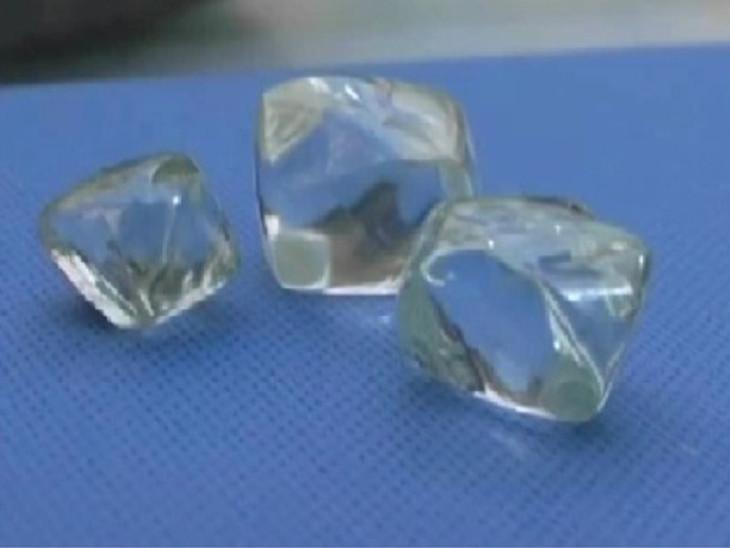 पन्ना में एक महीने बाद फिर से हीरों की नीलामी शुरू हो गई है। इस बार उथली खदानों से मिले हीरों की प्रदर्शनी है। - Dainik Bhaskar
