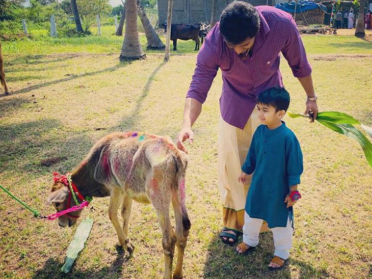 सौंदर्या के बेटे वेद साथ गाय को चारा डालते पति विशगन