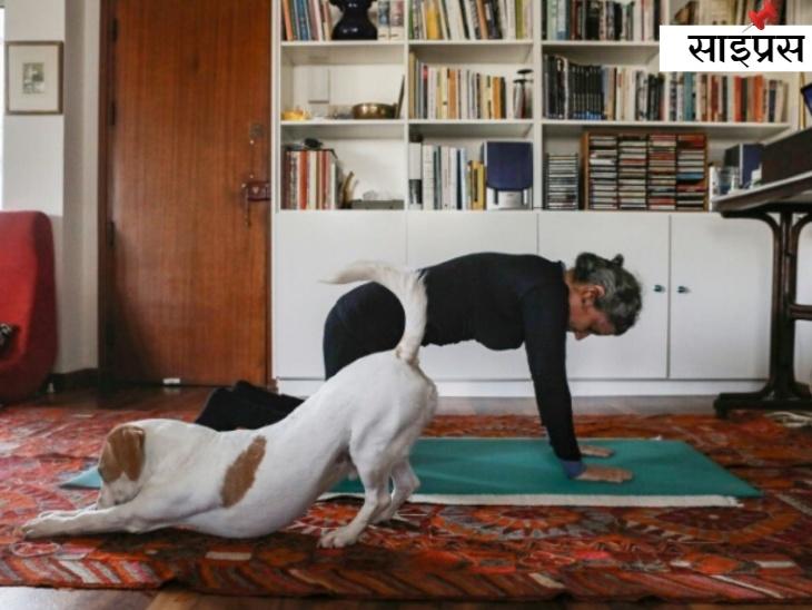 एक ऑनलाइन पिलाटे कोर्स की मदद से एक साइप्रेट महिला घर में एक्सरसाइज करती हुई, जबकि उनका कुत्ता बगल में उन्हीं की नकल करता हुआ।