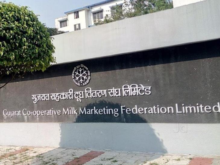 अमूल का वित्तवर्ष 2020 में कारोबार 17 प्रतिशत बढ़कर 38,550 करोड़ रुपए हुआ बिजनेस,Business - Dainik Bhaskar