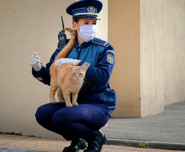 रोमानिया के बुखारेस्ट शहर में एक चर्च के बाहर बिल्ली को दुलारती महिला पुलिसकर्मी। यहां ईस्टर के मौके पर बहुत कम लोग चर्च पहुंचे। ज्यादातर ने घर में ही प्रार्थना की। देश में सख्त लॉकडाउन है और ईस्टर पर भी कड़ी शर्तों के साथ कुछ ढील दी गई थी।