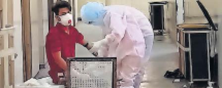 बाड़मेर की सीख से सुनीता कोरोना वॉरियर, जयपुर में पॉजिटिव मरीजों का कर रही है इलाज बाड़मेर,Barmer - Dainik Bhaskar