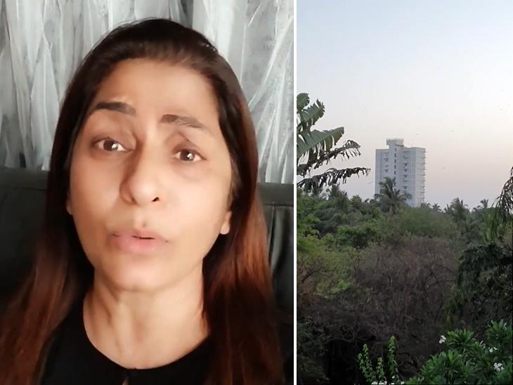 अर्चना ने दिखाया बंगले के आसपास का नजारा, बिल्डिंग दिखाकर बोलीं- ये नहीं थी तो क्षितिज का नजारा बेहद सुंदर था बॉलीवुड,Bollywood - Dainik Bhaskar