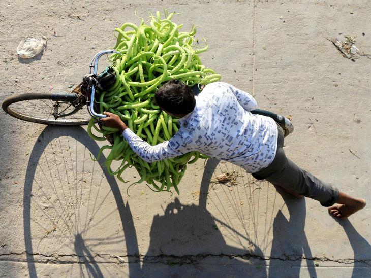 प्रयागराज में किसान साइकिल पर ककड़ी ले जा रहा है। गर्मी के मौसम में इससे खासी आमदनी हो जाती थी, लेकिन इस बार लॉकडाउन की वजह से ग्राहक नहीं मिल रहे।