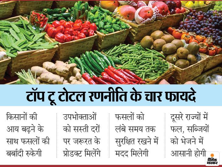 ऑपरेशन ग्रीन को 500 करोड़ मिलेंगे; दायरे को टॉप यानी टोमैटो, ओनियन और पोटैटो से बढ़ाकर टोटल यानी सभी सब्जियों तक किया गया|इकोनॉमी,Economy - Dainik Bhaskar