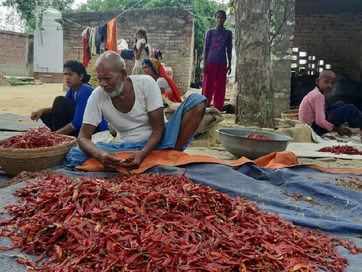 खेती और पशु के अलावा गांव में आजीविका के अन्य साधन नहीं हैं।