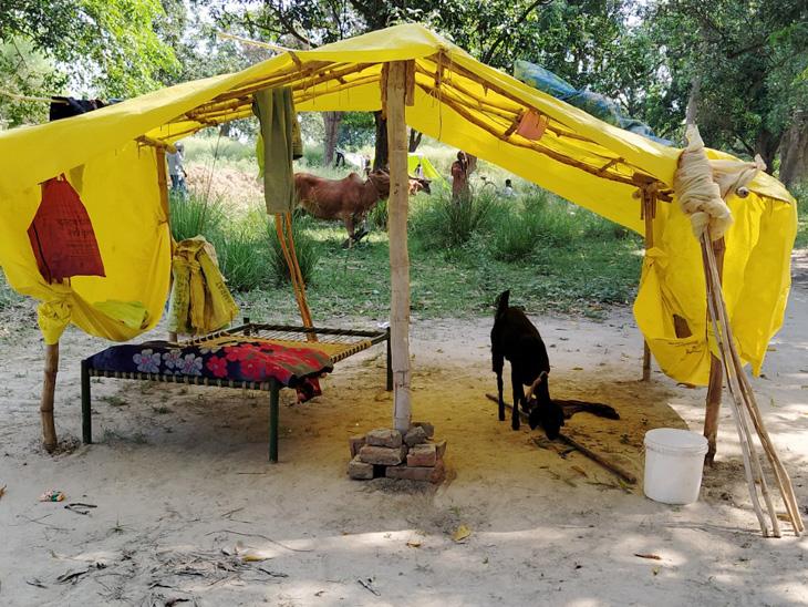 राहुल 7 दिन से बाग में रह रहे हैं। यहां उनके आने से पहले ही घर वालों ने टाट-पट्टी का तंबू बना दिया था।