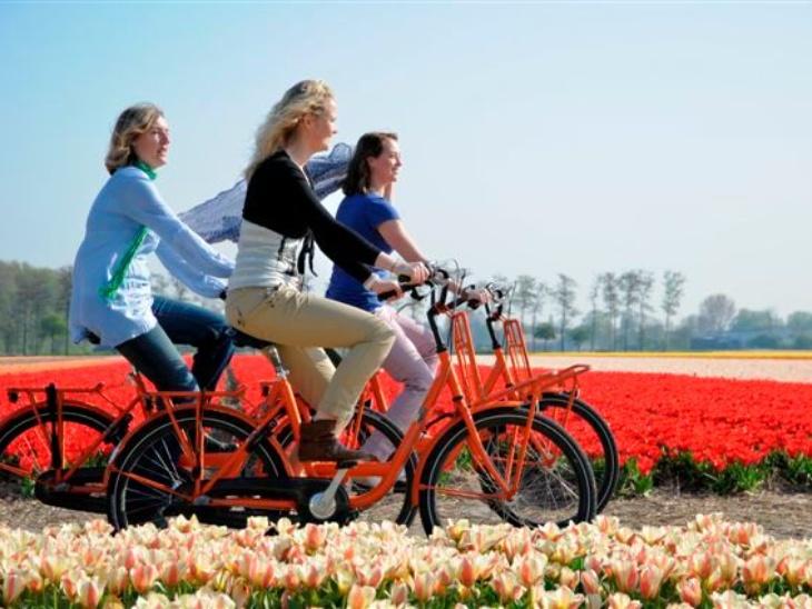 नीदरलैंड्स में 15 वर्ष से अधिक उम्र वाले आठ में से सात लोगों के पास खुद की साइकिल है।