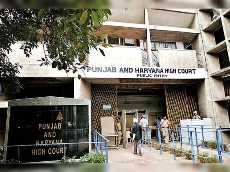 शादी में दूल्हा-दुल्हन ने नहीं पहना मास्क, हाईकोर्ट ने 10 हजार रुपए जुर्माना लगाया, 15 दिन के भीतर जमा कराने के निर्देश|चंडीगढ़,Chandigarh - Dainik Bhaskar