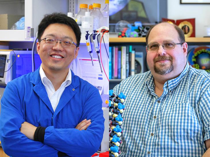 Coronavirus Gene Editing Tool | Coronavirus Latest Research On COVID Gene Editing Tool By Stanford University Scientists; All You Need To Know | फ्लू के लिए बनाए जेनेटिक हथियार से हराएंगे कोराना को, वायरस को टुकड़ों में तोड़ने में 90 फीसदी सफलता मिली