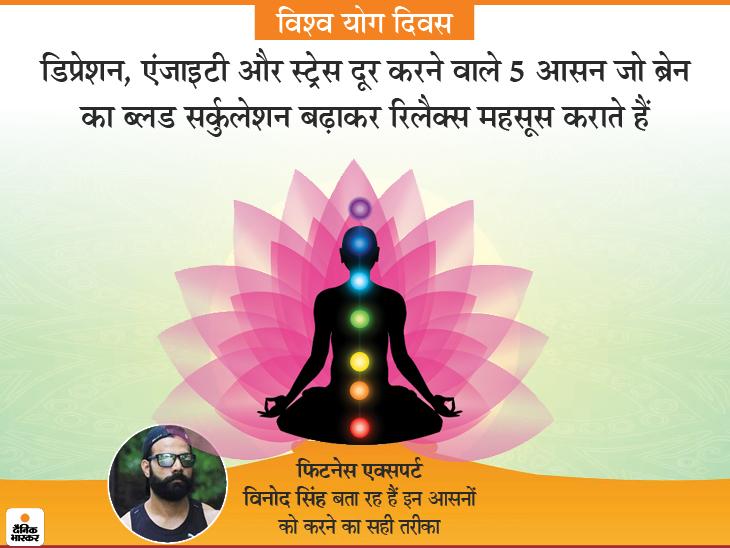 मन को सुकून देने वाले 5 योगासन जो मेंटल हेल्थ को सुधारेंगे, ये जरूरी क्योंकि हर 7 में से 1 भारतीय मानसिक बीमारी से जूझ रहा|लाइफ & साइंस,Happy Life - Dainik Bhaskar