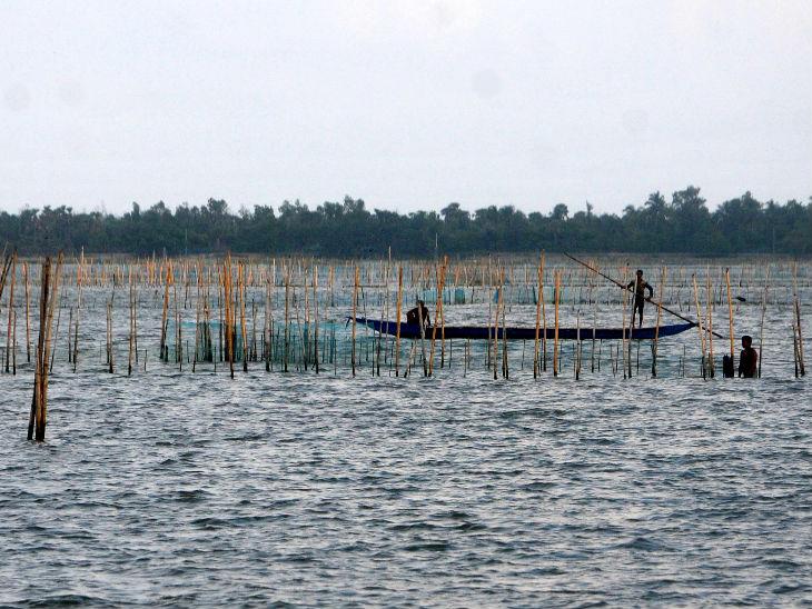 चिल्का के पास बसे करीब 100 गांवों के लिए मछली ही आय का मुख्य सोर्स है, कोरोना की वजह से इसकी डिमांड कम हो गई है।