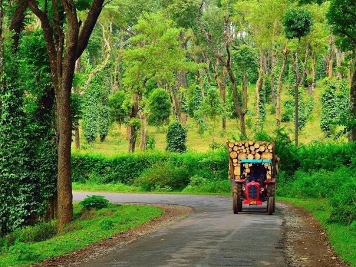 कूर्ग, कर्नाटक फ्लोरा एंड फॉना से ढके कूर्ग को मानसून के दौरान खास जगहों में गिना जाता है। यहां पर कॉफी की खेती काफी फेमस है। कूर्ग में टूरिस्ट के अलावा ट्रैकिंग, पहाड़ पर चढ़ने और कैंपिंग के शौकीन लोग भी इकट्ठे होते हैं।