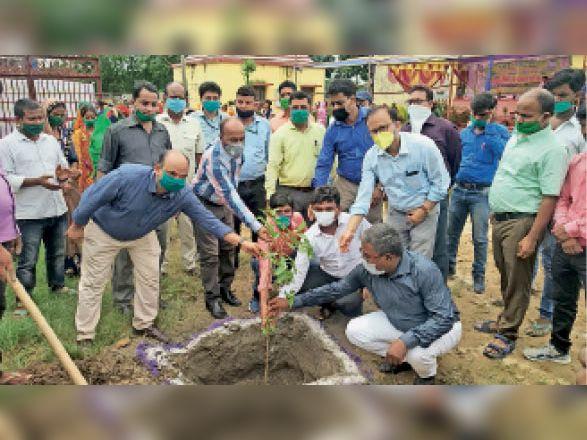 सुखासन पंचायत सरकार भवन में पौधरोपण करते एसडीएम व अन्य। - Dainik Bhaskar