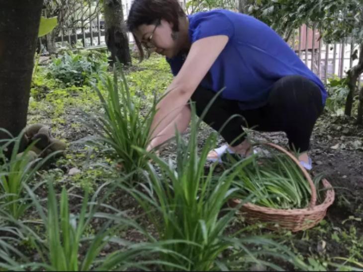 कोहिमा की रहने वाली अचानो होम को बागवानी का शौक हमेशा से रहा है। वे अपने गार्डन में फूल लगाना पसंद करती हैं। लेकिन लॉकडाउन के दौरान लोगों को सब्जियों के लिए परेशान होते देख उन्होंने अपने गार्डन में सब्जियां उगाना शुरू किया।