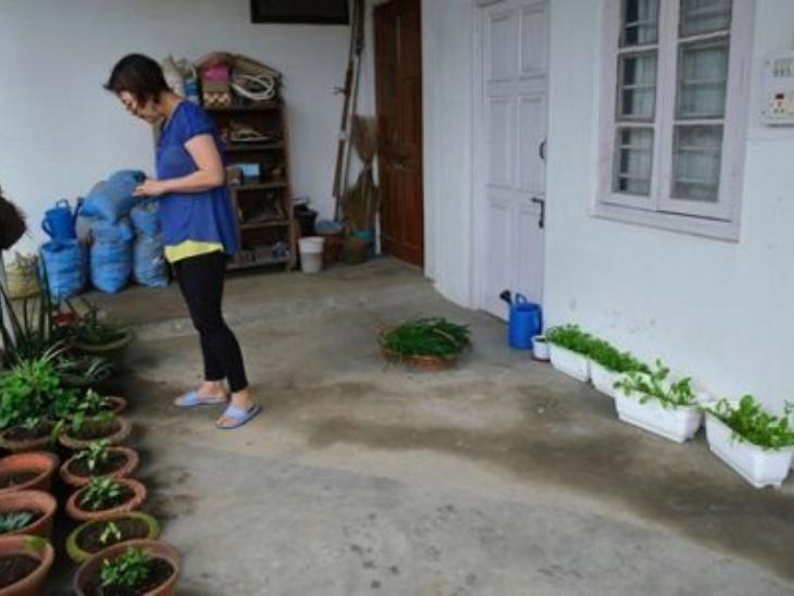 होम ने सब्जियों के आसपास बेल लगाई है। बरसात का मौसम होने की वजह से उन्होंने पहाड़ों पर मकई उगाना शुरू किया है। दरअसल, यहां लोगों ने घर में ही सब्जियां उगाकर बेचना शुरू कर दिया है, जिससे उनकी कमाई भी होने लगी है। नागालैंड के लोग खेती-बाड़ी के लिए जाने जाते थे लेकिन बदलते समय के साथ उन्होंने खेती करना छोड़ दिया। मगर, लॉकडाउन के वजह से वह फिर इस काम से जुड़ रहे हैं।