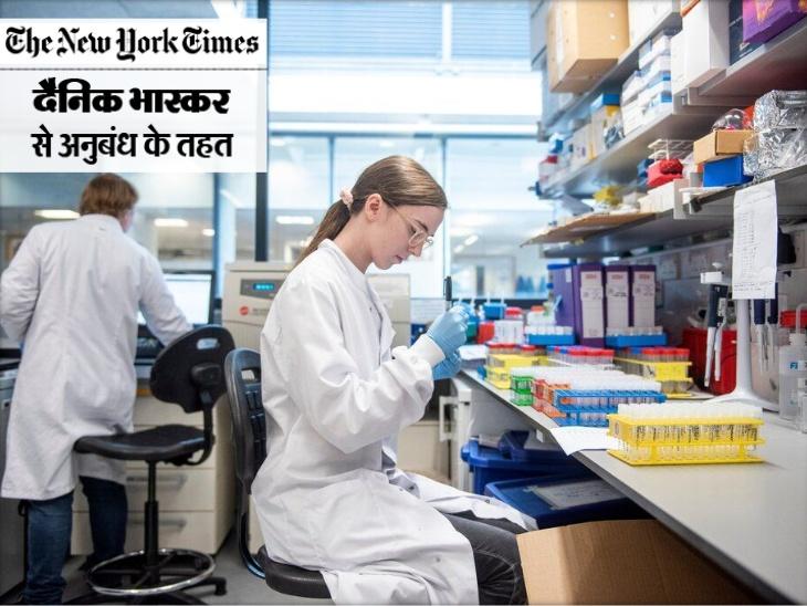 ऑक्सफोर्ड में वैक्सीन ट्रायल के लिए बल्ड सैंपल्स की जांच करते साइंटिस्ट। - Dainik Bhaskar