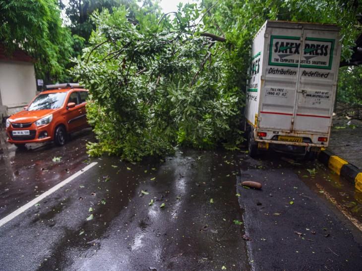 भारी बारिश और तेज हवा के कारण मुंबई में कई हिस्सों में आज पेड़ भी गिरे हैं।