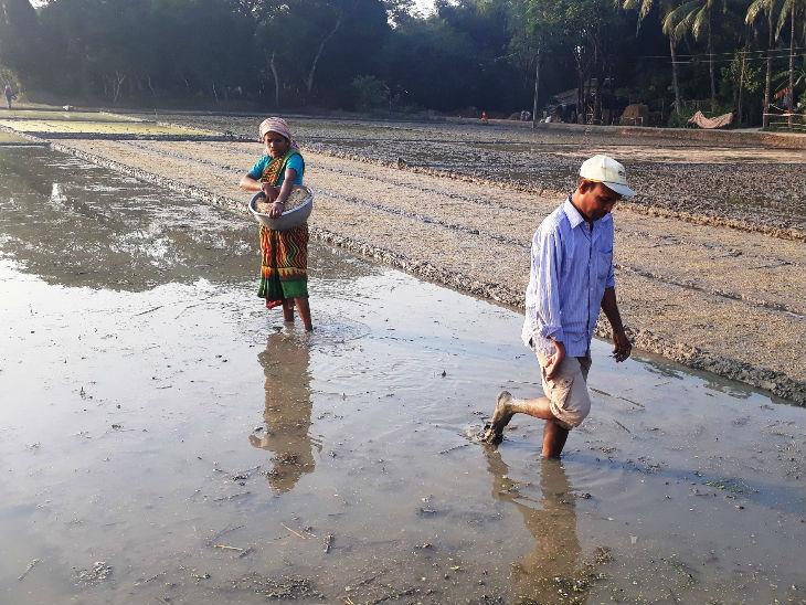 फतवा बांग्लादेश की सीमा से सटे मुर्शिदाबाद जिले के अद्वैतनगर गांव में एक बैठक के बाद जारी किया गया। ये गांव बंगाल और झारखंड की सीमा पर स्थित रघुनाथगंज अनुमंडल में आते हैं। फोटो- संजय दास