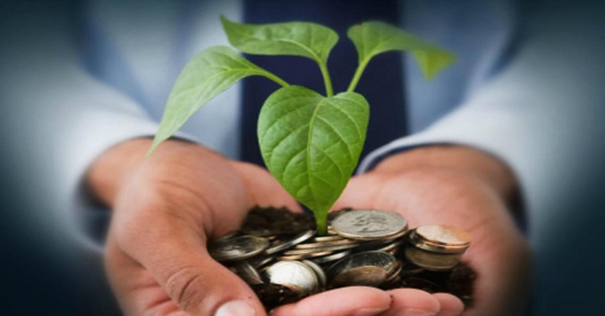 एलआईसी हाउसिंग फाइनेंस जुटाएगी 50,500 करोड़ रुपए, 28 सितंबर को शेयर धारकों से एजीएम में लेगी मंजूरी बिजनेस,Business - Dainik Bhaskar
