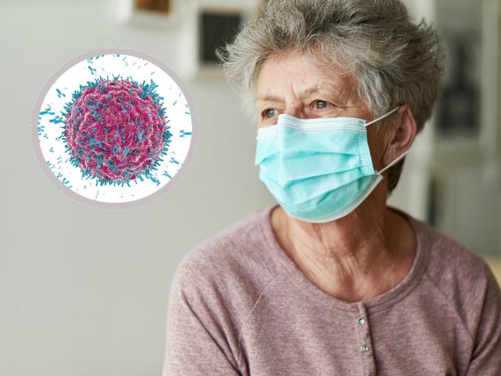 कोरोना का सबसे ज्यादा खतरा बुजुर्गों को लेकिन सबसे ज्यादा इम्युनिटी रेस्पॉन्स इनमें ही देखा, एक बार संक्रमित हुए तो 4 माह तक रहता है एंटीबॉडी का असर|लाइफ & साइंस,Happy Life - Dainik Bhaskar