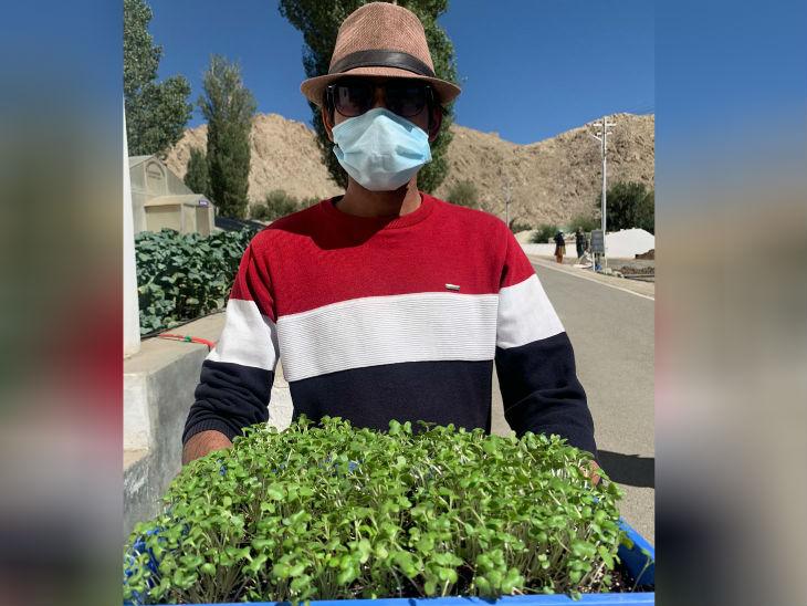 लद्दाख के किसान अभी 25 तरह की सब्जियां उगा रहे हैं, जबकि 1962 के पहले यहां सिर्फ 4 सब्जियां उगाई जाती थी। इसके अलावा 78 तरह की सब्जियों पर काम हो रहा है